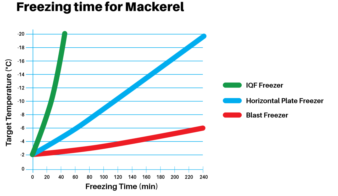 Mackerel freezing time