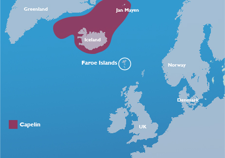 capelin map